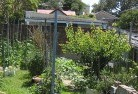 Barwite Vegetable gardens 12