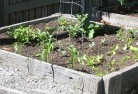 Barwite Vegetable gardens 14