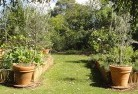 Barwite Vegetable gardens 3
